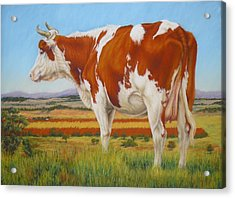 Acrylic Print featuring the painting Cow On The Lookout by Margaret Stockdale