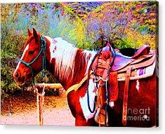 Cowgirl Up Acrylic Print