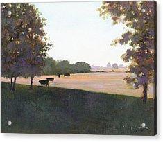 Cows 5 Acrylic Print by J Reifsnyder
