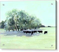 Cows 7 Acrylic Print by J Reifsnyder