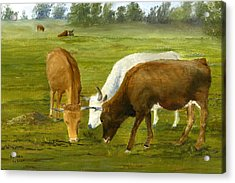 Acrylic Print featuring the painting Cows Gossip Session In Louisiana Pasture by Lenora  De Lude