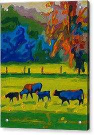 Cows In Texas Field At Sunset Oil Painting By Bertram Poole Acrylic Print by Thomas Bertram POOLE