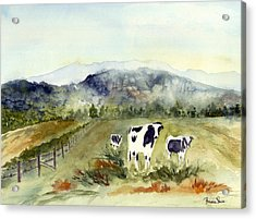 Cows In Vermont  Acrylic Print by Peggy Maunsell
