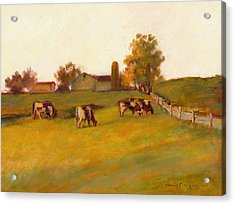 Cows2 Acrylic Print by J Reifsnyder