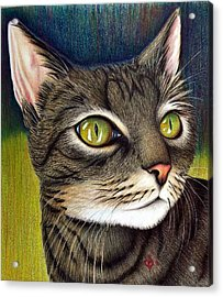 Acrylic Print featuring the drawing Cozette by Danielle R T Haney