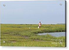 Crabbing At Mystic Island Acrylic Print by David Jackson