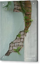 Acrylic Print featuring the photograph Cracked by Valerie Reeves