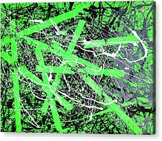 Crackin' It Wide Open Acrylic Print by Andrew Martin