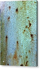 Crackled Case Acrylic Print
