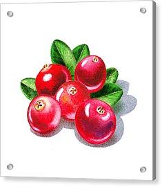 Cranberries Acrylic Print by Irina Sztukowski