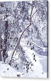 Cranberry River Deep Snow Acrylic Print by Thomas R Fletcher