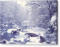 Cranberry River Heavy Snow Acrylic Print by Thomas R Fletcher