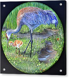 Acrylic Print featuring the painting Crane Circle by AnnaJo Vahle