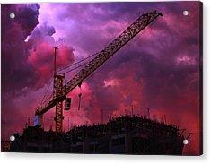 Crane I Acrylic Print by Felipe Djanikian