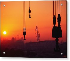 Cranes At Sunset Acrylic Print by The Irish Image Collection