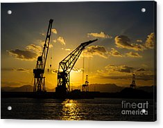 Cranes In The Sunset Acrylic Print