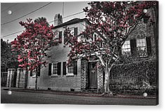 Crape Myrtles In Historic Downtown Charleston 1 Acrylic Print