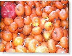 Crate Of Pumpkins Acrylic Print