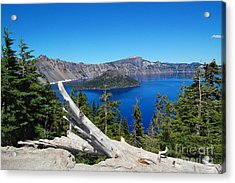 Crater Lake And Fallen Tree Acrylic Print