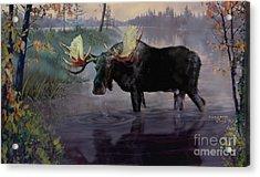 Craven Moose Acrylic Print
