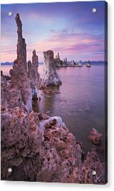 Crayola Funhouse Acrylic Print by Peter Coskun