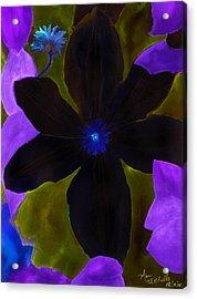 Crazy Exposure Clematis Acrylic Print