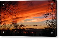 Creamsicle Acrylic Print by Tom Mansfield