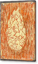 Creamy Pine Cone Acrylic Print by Amanda Elwell
