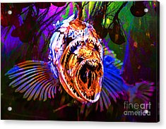 Creatures Of The Deep - Fear No Fish 5d24799 V2 Acrylic Print by Wingsdomain Art and Photography