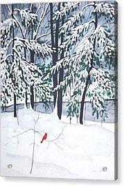 Creek And Cardinal - Mill Creek Park Acrylic Print