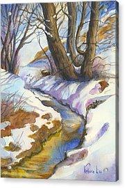 Creek At Bobcat Ridge Acrylic Print