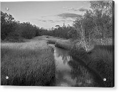 Acrylic Print featuring the photograph Creek At Wilmington Island by Frank Bright