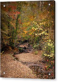 Creek Bed In Autumn - Fall Landscape Acrylic Print by Jai Johnson