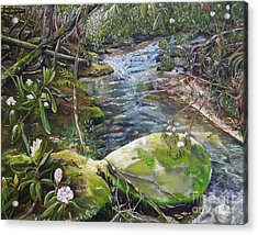 Creek -  Beyond The Rock - Mountaintown Creek  Acrylic Print