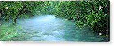 Creek Flowing Through A Forest, Ozark Acrylic Print