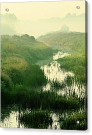 Creek I Acrylic Print by Sarah Boyd