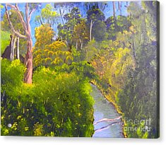 Creek In The Bush Acrylic Print