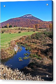 Creek In The Valley Acrylic Print