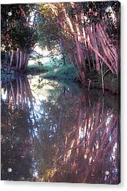 Creek Magic Acrylic Print