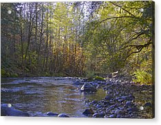 Creek Of Native Times Acrylic Print by Tim Rice