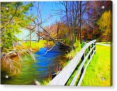 Creek Series 02 Acrylic Print
