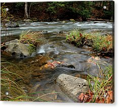Whispering Waters Acrylic Print