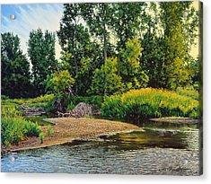 Creek's Bend Acrylic Print
