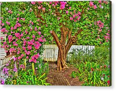 Acrylic Print featuring the photograph Crepe Myrtle In Wiliamsburg Garden by Jerry Gammon