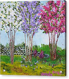 Crepe Myrtles Acrylic Print by Angela Annas