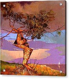 Crimean Pine Acrylic Print by Anastasija Kraineva