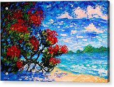 Crimson Bloom Red Flower Tree At The Beach Blue Sky Landscape Acrylic Print