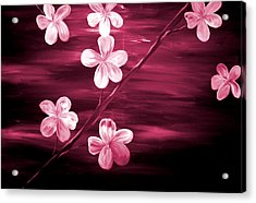 Crimson Cherry Blossom Acrylic Print by Mark Moore