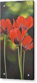 Crimson Petals Acrylic Print