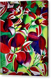 Crimson Tropical Singapore Orchids Acrylic Print by Sacha Grossel